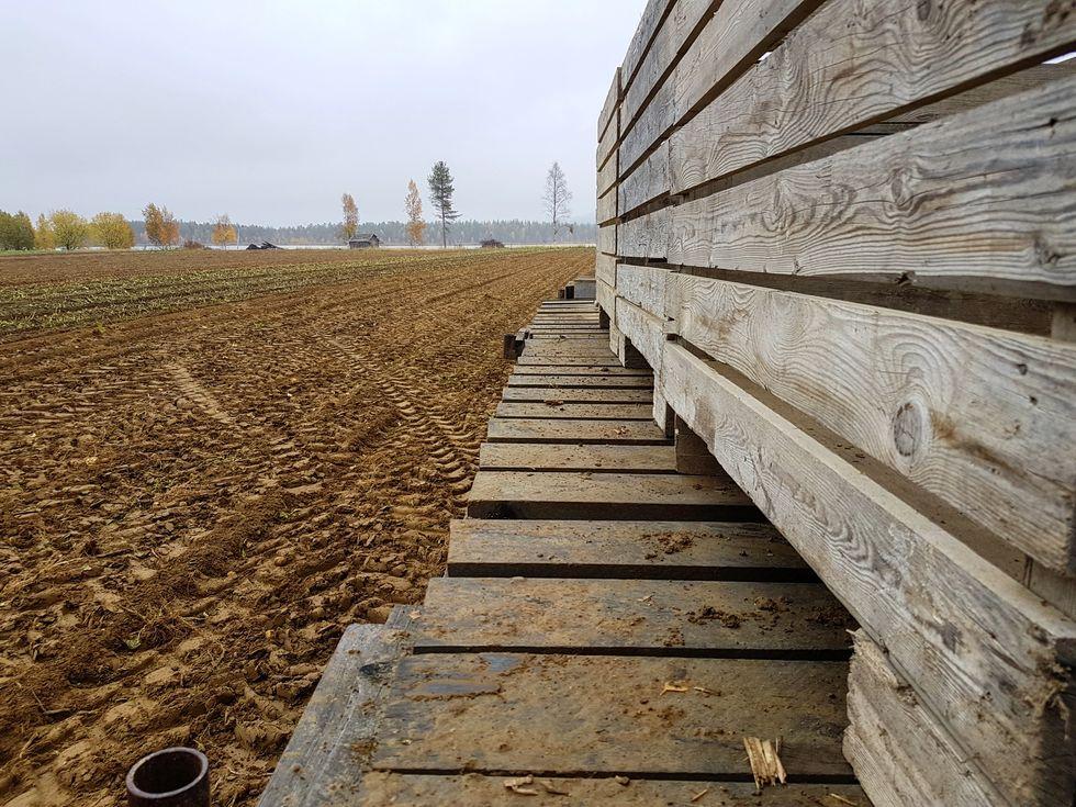 farmen.jpg