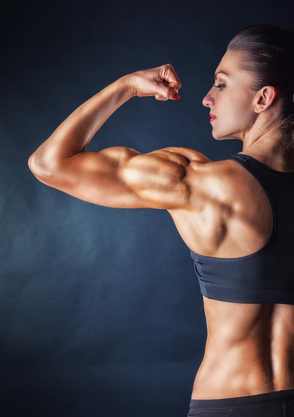 öka i vikt och muskler